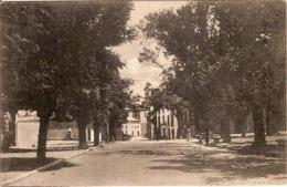 (C).Castel Del Piano Dell'Amiata(GR).Viale Vittorio Emanuele.F.to Piccolo.Ottimo Stato (c16) - Grosseto