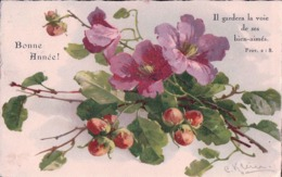 Klein Catharina, Bonne Année, Fleurs Et Verset, Litho (2959) - Klein, Catharina