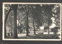 Astenet - Institut Ste-Catherine - 1957 - Lontzen