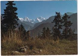 Interlaken - Natur - (2 Pro Juventute Briefmarken 1971) - BE Berne
