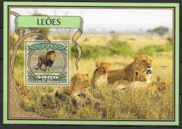 Protection De La Nature - Big Cats (cats Of Prey)