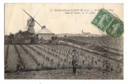 49 MAINE ET LOIRE - BEAULIEU SUR LAYON Le Moulin Des Cinq, Dans Les Vignes - France