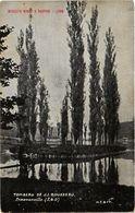 CPA Biscuits Ningt & Bastide Lyon-Tombeau De J.J.Rousseau-ERMENONVILLE (291171) - Ermenonville