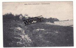 Heide-Kamthout (duinenzichtje) Uitg. Hoelen N° 6642 - Kalmthout