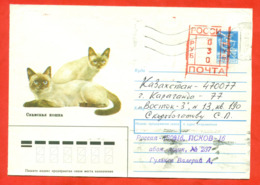 Russia 1993. The Envelope With Printed Stamp Past Mail. Mixed Franking Of The USSR And Russia. - Domestic Cats