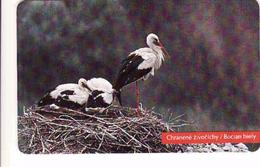 Slovakia, Chip Phonecard 22/1996, Tirage 50 000, Bird, Stork, Cigogne - Slowakije