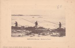 Récolte Du Varech - Barfleur