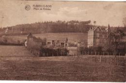 FLOBECQ MONT DE RHODES - Flobecq - Vloesberg