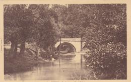 Feurs, La Loise Au Pont Palais (pk61180) - Feurs
