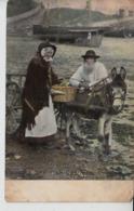 D08. 14 X Donkey Carts And Panniers - United Kingdom