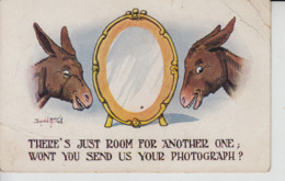 D11. 8 X Comedy Donkeys Artist Signed - United Kingdom
