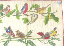 Très Jolie Pochette ( Mouchoir) Avec Les Oiseaux De Chez Nous, Passereaux, Tenderie,..Oiseau, Ornithologie,....(SL) - Autres Collections