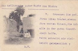 Biskra - La Sainte Oasis - 1898          (A-114-170720) - Biskra