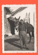 ALPINI Con Mulo 2 Foto Anni 30 - War, Military