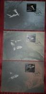 BATS, CROATIA, SET OF MAXIMUM CARDS - Chauve-souris
