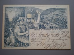 TRIBERG - HOTEL & PENSION ZUM ENGEL - LITHO 1889 - Triberg