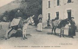 VILLEFORT - N° 9 - PAYSANNES SE RENDANT AU MARCHE ( ANES ) - Villefort