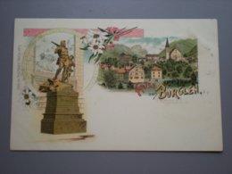 BURGLEN - LITHO CARL KUNZLI - EDELWEISS - TG Thurgovie