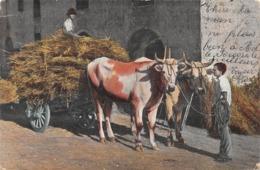 Bœufs Et Char De Paille - Timbre Rolle - Lausanne - Bauern