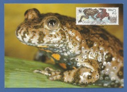 Ceskoslovensko  1989 , Fire-bellied Toad (Rotbauchunke) - WWF Official Maximum Card First Day - PRAHA 18-7-1989 - Tschechoslowakei/CSSR