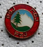 Alpine Federation Of Yugoslavia  PZJ PSJ  Alpinism, Mountaineering Yugoslavia Pin - Alpinismus, Bergsteigen