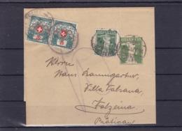 Streifband: 1915, N°. 32. Mit Zusatzfrankatur: Zu: 125 III / Mi: 113 III. + Nachportomarke: Paar Zu:31 / Mi: 31 - Stamped Stationery