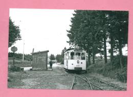 Photo Sugny   Poste  De  Douane =  TRAM  Ligne PALISEUL  PUSSEMANGE - Reproductions