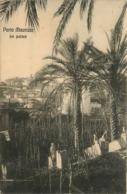 Porto Maurizio * Le Palme * Les Palmiers * Italie * Italia - Italy