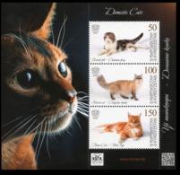 2019Kyrgyzstan EP125-27/B35Domestic Cats - Domestic Cats