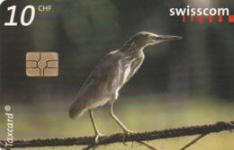 SUIZA. World Of Birds. AVES. Mangrove Heron. 12/01. SUI-CP-113. (216). - Pájaros