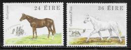 Ireland Scott # 508-9 MNH Horses, 1981 - 1949-... Republic Of Ireland