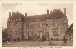 9402 B - CPA Oisseau - Château De La Haie ( XII Siècle ) - Autres Communes