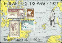 NORWEGEN 1977 Sonderdruck / Souvenir Bloc Polarfilex Tromso 1977 - Blocks & Sheetlets