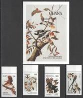 Y674 IMPERF,PERF 1984 GHANA FAUNA BIRDS AUDUBON #1107-11 MICHEL 26 EURO 1SET+1BL MNH - Oiseaux