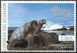 EQUATEUR J.Galapagos-Tortue 1v 13 Neuf ** MNH - Equateur
