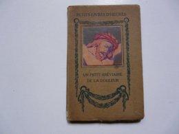 LES PETITS BREVIAIRES - Alexandre LETY-COURBIERE : De La Douleur - Illustrations De STAB - Boeken, Tijdschriften, Stripverhalen