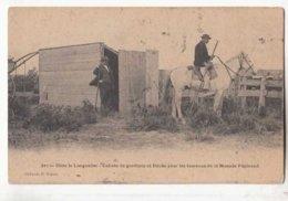 Dans Le Languedoc - Cabane De Gardians Et Bouâo Pour Les Taureaux De La Manade Papinaud - Achat Immédiat  (cd 002) - Bull