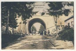 CPA HERBEUMONT 1908 Viaduc SNCB Duparque Florenville - Herbeumont