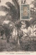 D38057 CARTE MAXIMUM CARD 1939 AOF DAHOMEY - COCONUT OIL TREE CLIMBER CP ORIGINAL - Arbres