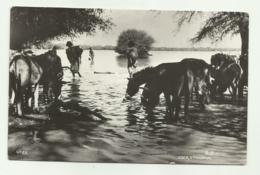 ETHIOPIA - COCA LAKE 1953 VIAGGIATA  FP - Etiopía