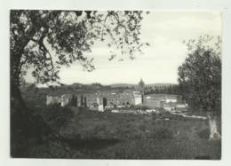 MONTEOLIVETO MAGGIORE ( SIENA )  - PANORAMA EST   - VIAGGIATA FG - Siena