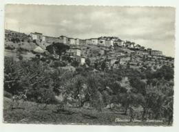 CHIUSDINO ( SIENA ) PANORAMA VIAGGIATA  FG - Siena