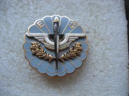 Insigne Militaire Du E.A.S à Définir - Armée De Terre