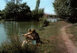 CPM - VIGNEUX S/SEINE - LE LAC ... (pêcheurs à La Ligne) - Vigneux Sur Seine