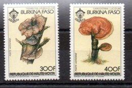 Serie De Burkina-Faso Aéreo N ºYvert 275A/B ** SETAS (MUSHROOMS) - Burkina Faso (1984-...)