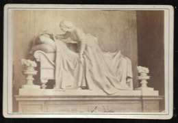 Monument Du Campo Santo Sur Carton Et Vue D'ensemble  Soit 2 Photos - Oud (voor 1900)
