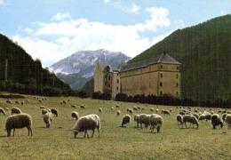 VALLE DE PINETA (Huesca) Pirineos Aragones Bielsa Colonia Padre Jorge Turull Alt 1350m RV - Huesca