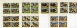 MONGOLIA 1970 Set 8 Block Of 4 V MNH FAUNA Wild Animals Wild Boar Trot Marmota Wolf Bear Elk Sheep - Bears