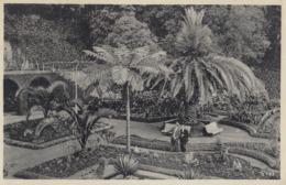 MADEIRA: Belmont Hotel Garden - Madeira