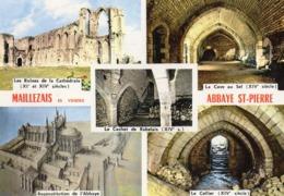 85 Maillezais / Vue Generale / Les Ruines De La Cathedrale  / La Cave Au Sel / Le Cellier - Maillezais